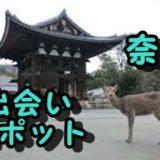 奈良市 アラサー 出会いの場