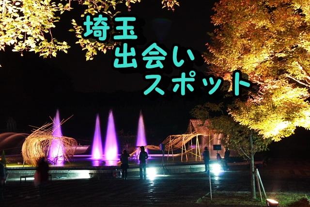 埼玉 アラサー 出会いの場